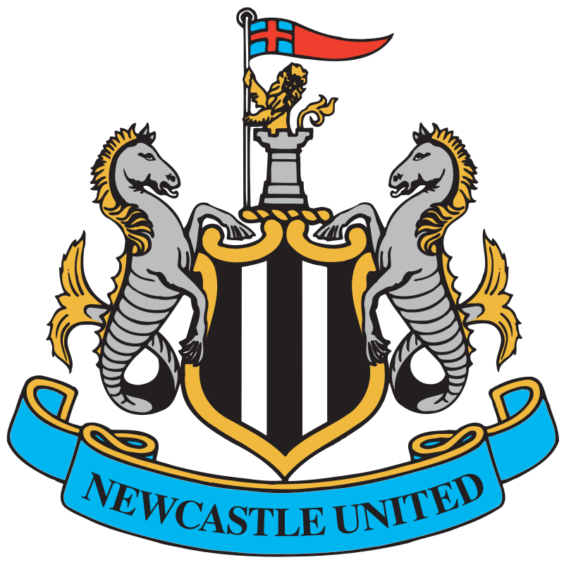 This is an image of the Newcastle United Football Club logo. The club describes their logo As iconic as our famous black and white stripes and as unique as the silhouette of St. James' Park, our club crest captures the identity of Newcastle United and the city of Newcastle upon Tyne.